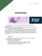 TOXOPLASMOZA1