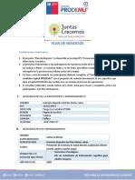 PLAN_DE_NEGOCIOS.docx