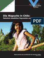 Mapuche_Memorandum__November_2013_HP