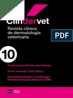 MM_CLINDERVET_10