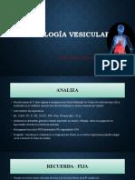 Patología de vesicula biliar.pptx