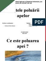 Efectele poluarii apelor