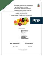 Informe_Elaboracion de pulpa de mango