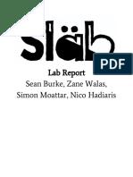 sean burke - lab report