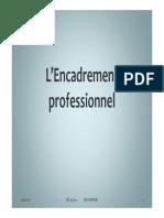 Encadrement_professionnel