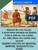 2o. DOMINGO COMUM A.ppt