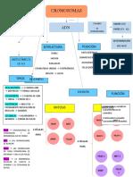 mapa conceptual ingeniería genética