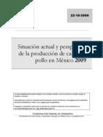 Pollo-2009