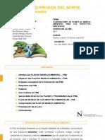PLAN DE MANEJO AMBIENTAL (1) (1)