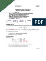 P1_MB536_2020_2_PraF.docx