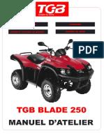 manuel-atelier-blade-tgb-250.pdf