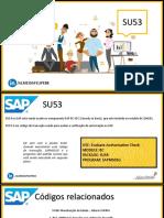 SUS3 - AUTORIZACAO USUARIO.pdf