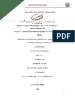 INVESTIGACION FORMATIVA- Fiscalizacion Tributaria