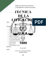 LITIGACION MIGUEL.docx