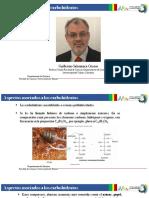 iCarbohidratos.pdf
