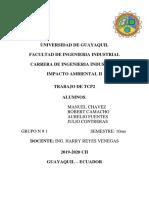 TCP 2-IMPACTO AMBIENTAL 2