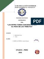 ANAMELI  IBÁÑEZ - CII- FUND.INVEST