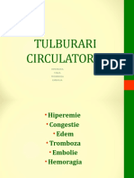LP 04 Tulburari circulatorii