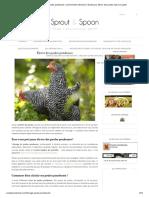 Elevage de poules pondeuses_ comment bien démarrer _ Guide pour élever des poules dans son jardin