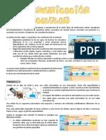 TEMA 3. SEÑALIZACIÓN CELULAR.pdf