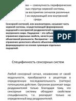 Презентация ФСС.pptx