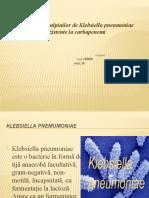 Raspandirea-tulpinilor-de-Klebsiella-pneumoniae-rezistente-la-carbapenemi-1