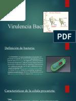 Virulencia Bacteriana