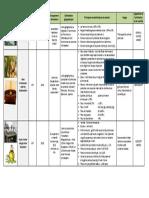 DOC_288.pdf