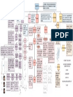 carbohidratos organizador grafico