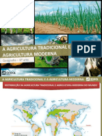 agricultura traducional vs moderna.pptx