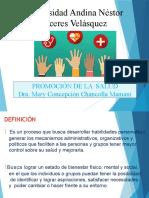 Promocion de La Salud Dra Mery Concepcion Chancolla Mamani