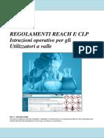 REACH_CLP_ISTR_OPERAT__UTILIZ_A_VALLE_REV027245.pdf