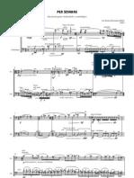 Per sonare, Invención para violonchelo y contrabajo (2004)