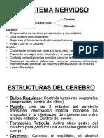 Clase_5_-_EL_SISTEMA_NERVIOSO
