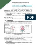 5 le squelette crânien.pdf