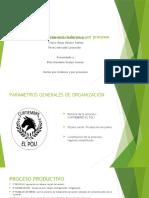 presentacion curtiembres.pptx