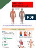 594d33d8eb970e9b130d30c6ee2a14f30a28d6e8d9f91__sistema-cardiovascular (1)