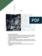 taller tipos de patrones (1).pdf