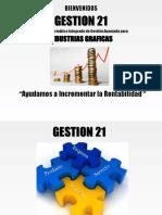 Presentación Pdi- Gestion 21
