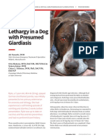Anorexia & Lethargy in a Dog with Presumed Giardiasis (1)