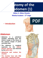 anatomyoftheabdomen1-180214193629