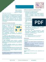 Tipaje_Linfocitario_HojaProducto.pdf