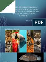 Concepto de especie, subespecie, semiespecies, (1)