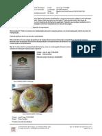 Relatório de Visita Técnica Carnaúba Manibura 31.08.20.pdf