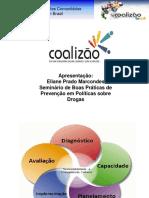 SEMINÁRIO BOAS PRÁTICAS - Coalizão.pdf