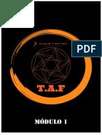 T.A.F - MÓDULO I