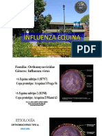 INFLUENZA-EQUINA(2)