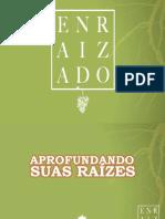 02-aprofundandosuasrazes-171110134336