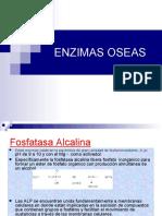 ENZIMAS OSEA