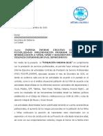 INFORME EJECUTIVO FORTALECIMIENTO DE LAS CAPACIDADES Y RELACIONES SANA REPARCHATE CON LA VIDA